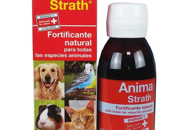 Anima Strath - Tienda de animales La Gloria