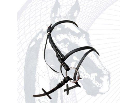 Cabezadas inglesas para caballos - Tienda de animales La Gloria