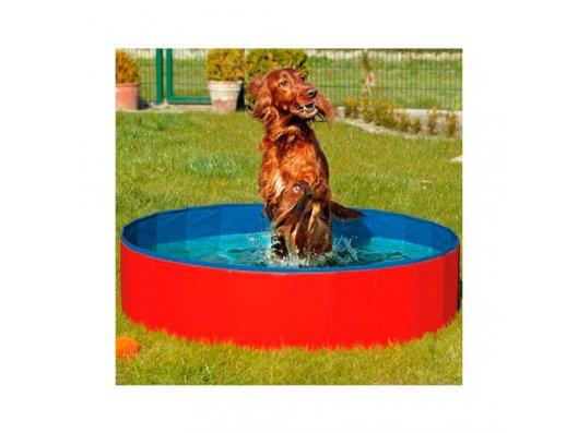 Piscina para perros - Tienda de animales La Gloria