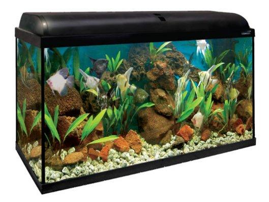 Peceras Aqualight - Tienda de animales La Gloria